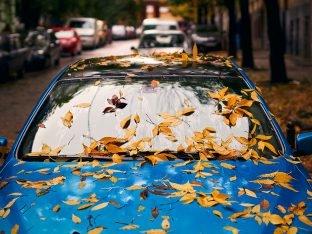 Autoschade Herfst