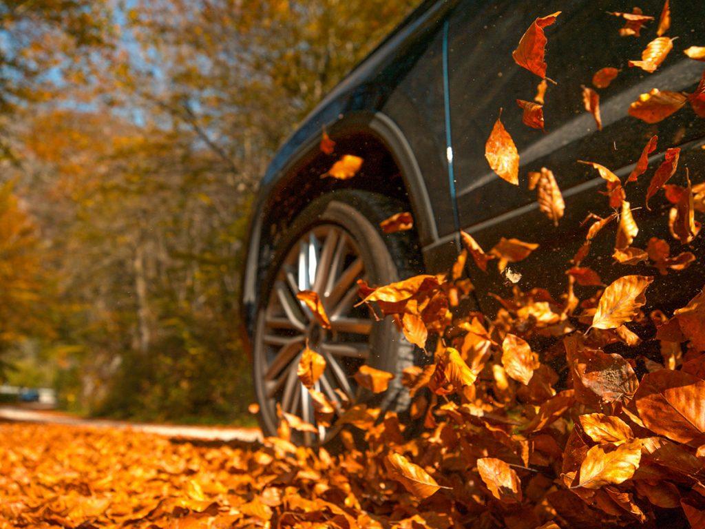 Ieder seizoen brengt weer nieuwe uitdagingen met zich mee. Autoschade ligt op de loer… En daarom geven onze vakmensen een aantal tips & tricks om veilig door de herfst heen te rijden!